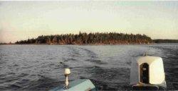 David Island