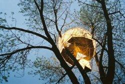 O2 Treehouse