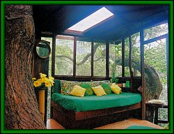 Waipio Valley Treehouse