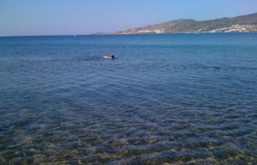LOVELY 2-DOUBLE BEDS APARTMENT NEW BUILT 80M DISTANCE FROM BLUE FLAG SANDY BEACH IN TURKEY