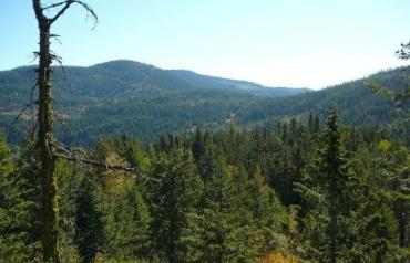 192 Acres of Prime Sub dividable Recreation land . Near Red Mountain Resort British Columbia .