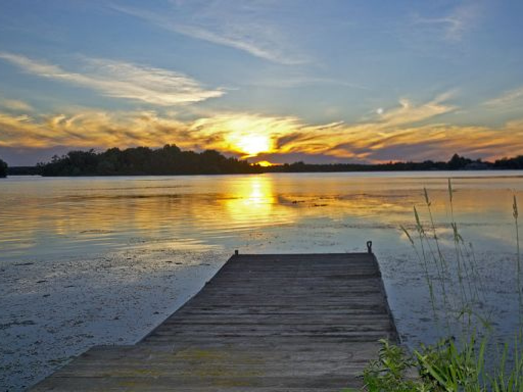 16 Acres And Custom Home On Puslinch Lake 45 Minutes To