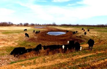AUCTION * 414± ACRES SOUTH TULSA, OK * MAY 21 10:00