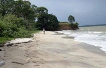 Amazing Sand Beach Property