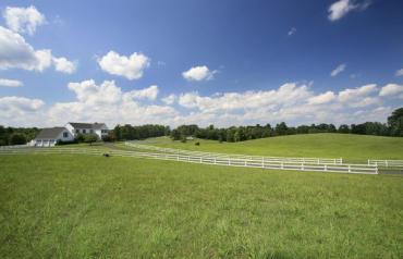 Charlottesville Virginia Farm/Vineyard