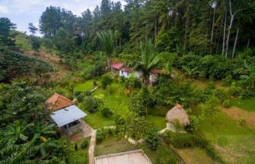 Coffee Farm Lot 2 Bedroom House in Penonome, PANAMA