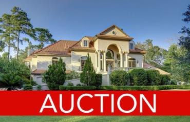 Luxury No-Reserve Auction - The Woodlands, TX - February 29