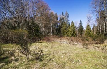 Affordable Nanoose Acreage - Island E Hwy
