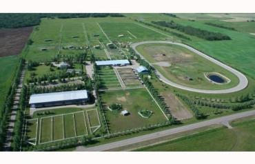 Calgary's Premier Equine Facility