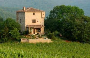 Luxury Chateau For Sale in Languedoc Wine Region Of France