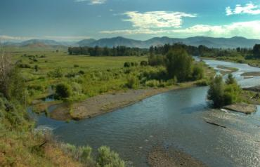 Crystal Creek Preserve: Your Ticket to Paradise