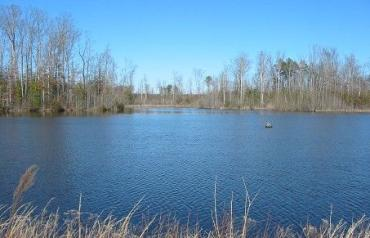 Absolute Auction 407 Acre Farm & Hunting Paradise
