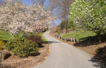 ON_LINE AUCTION - MAGNIFICENT MOUNTAIN PARADISE - NORTH CAROLINA