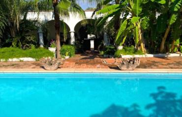 Historic Hacienda, Casita and Guest House on 3.3 Acres in Charming Colonial Town of Alamos