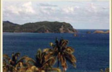 82 Acre Oceanfront Caribbean Estate - TOBAGO