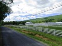 Premium Horse Ranch Auction