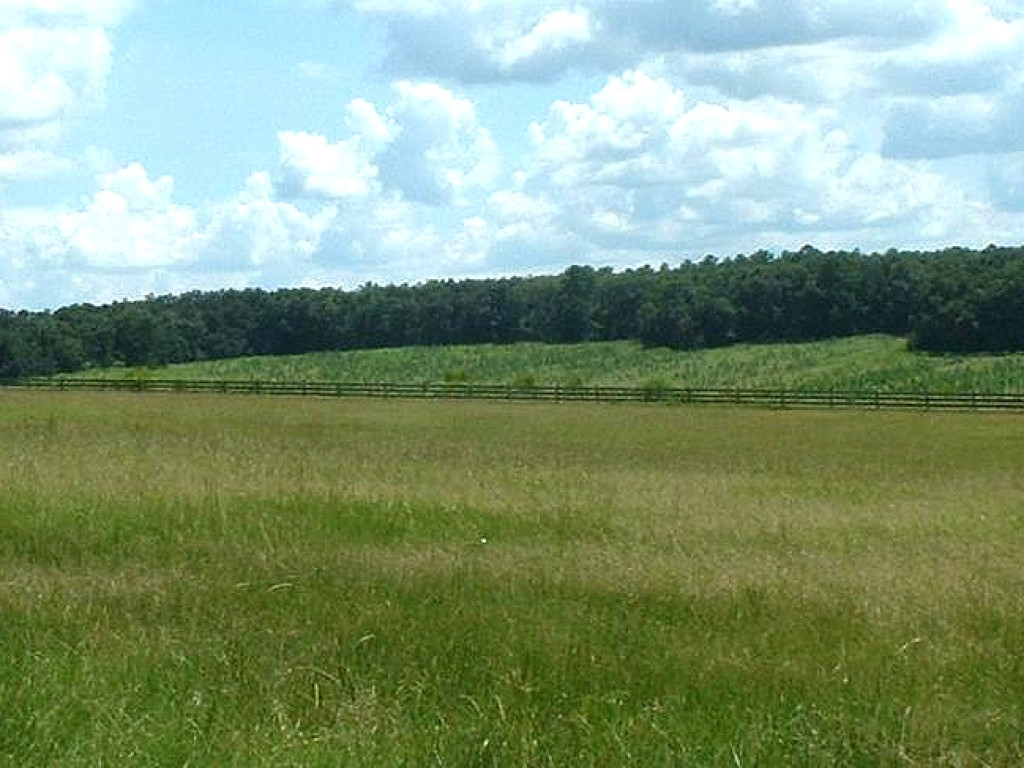 953 Acres (2,355 Hectares) Ranch - Farm For Sale - Florida, United