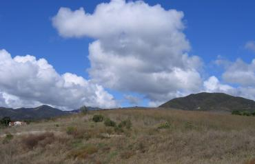 4 Lots Totalling 6 Acres; Convenient to Everything